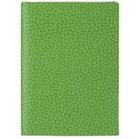 Laurige|Credit Card Holder|756|leather credit card case|mens credit card case|ladies credit card case|Light Green
